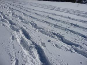 sport d'hiver à Serre-Ponçon